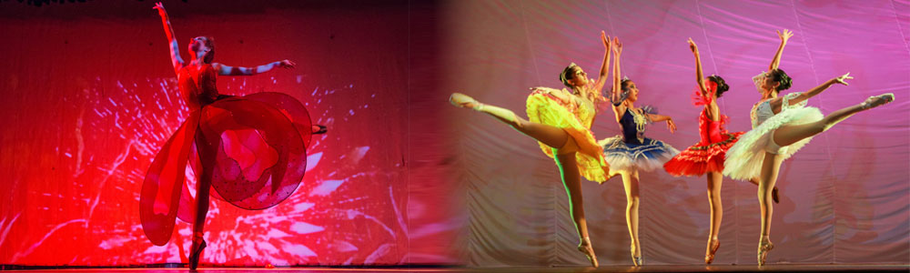 School of Russian Classical Ballet in Delhi